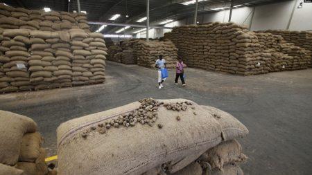 Des noix de cajou sont empilés dans un entrepôt à Bouaké Cote d'Ivoire le 23 février 2017