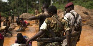 des rebelles de la Seleka pour illustration