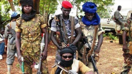 des rebelles de la seleka en Centrafrique