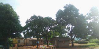 Village Sarki à 15 kilomètres de la sous-préfecture de Koui, dans l'Ouham-Pendé le 8 août 2019. Crédit photo : Gervais Lenga / CNC