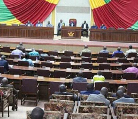 Hémicycle de l'assemblée nationale centrafricaine le 29 novembre 2019. Crédit photo : Corbeaunews.