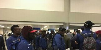 Les fauves à l'aéroport de Nouakchott