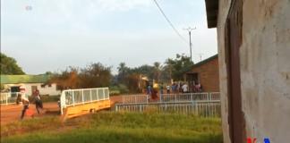 une foule d'une dizaine des personnes fuyant des tirs au quartier km5 cherchent à traverser un pontpour se mettre à l'abri