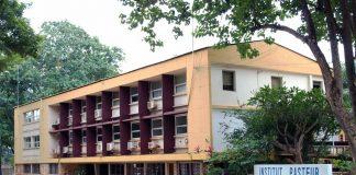 institut Pasteur de-bangui-en-centrafrique