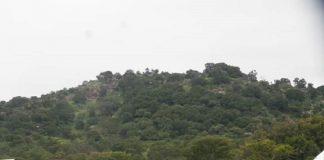 Le village Létélé, dans l'Ouham-Pendé, au nord-ouest de la République centrafricaine. Photo CNC / Fortuné Bobérang.