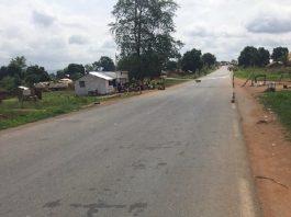 Barrière de contrôle des gendarmes à Gallo, non loin de Baboua, dans la préfecture de la Nana-Mambéré, au nord-ouest de la République centrafricaine.