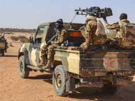 Des militaires maliens en patrouille mixte avec des membres des Gatia et MSA autour de Menaka - le 19 avril 2017