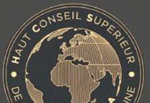 Diplomatie africaine logo union africaine