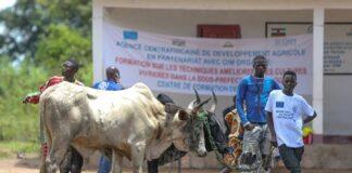 RCA : Plus de 700 jeunes de Paoua lancent leurs activités génératrices de revenus