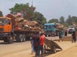 Des camions de marchandises en provenance de la Centrafrique entrent au Cameroun par le poste frontière Garoua-Boulai.
