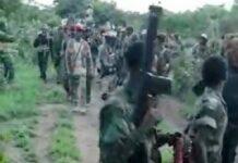 les combattants rebelles de l'UPC dans la fôret du Mbomou, en République centrafricaine.