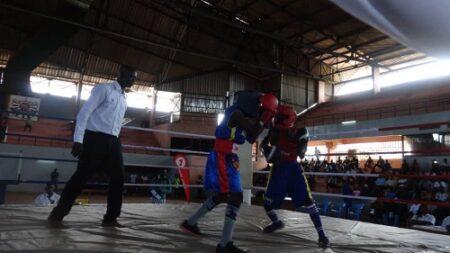 Combats boxe en cours