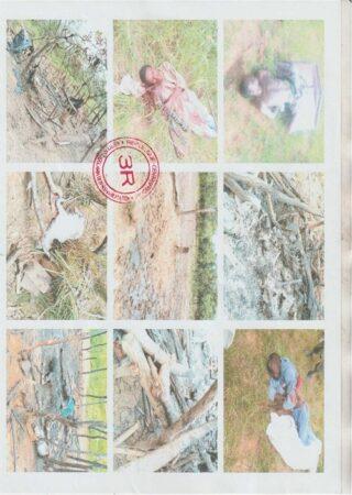 image massacre peul